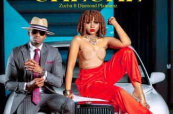 Zuchu & Diamond Platnumz - Cheche