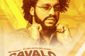 DJ Nelasta Nel Flow - Cavalo Maluco (Remix)